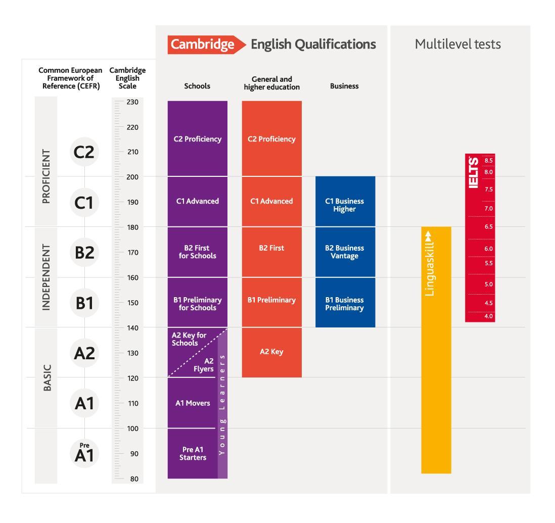 Уровни английского языка по CEFR: от Beginner до Proficiency